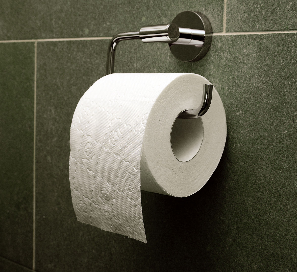the correct toilet paper way