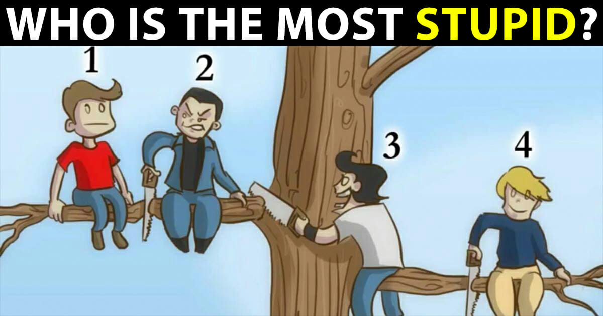 who is the most stupid?