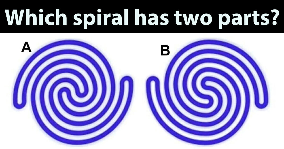 which of these spirals has two parts?
